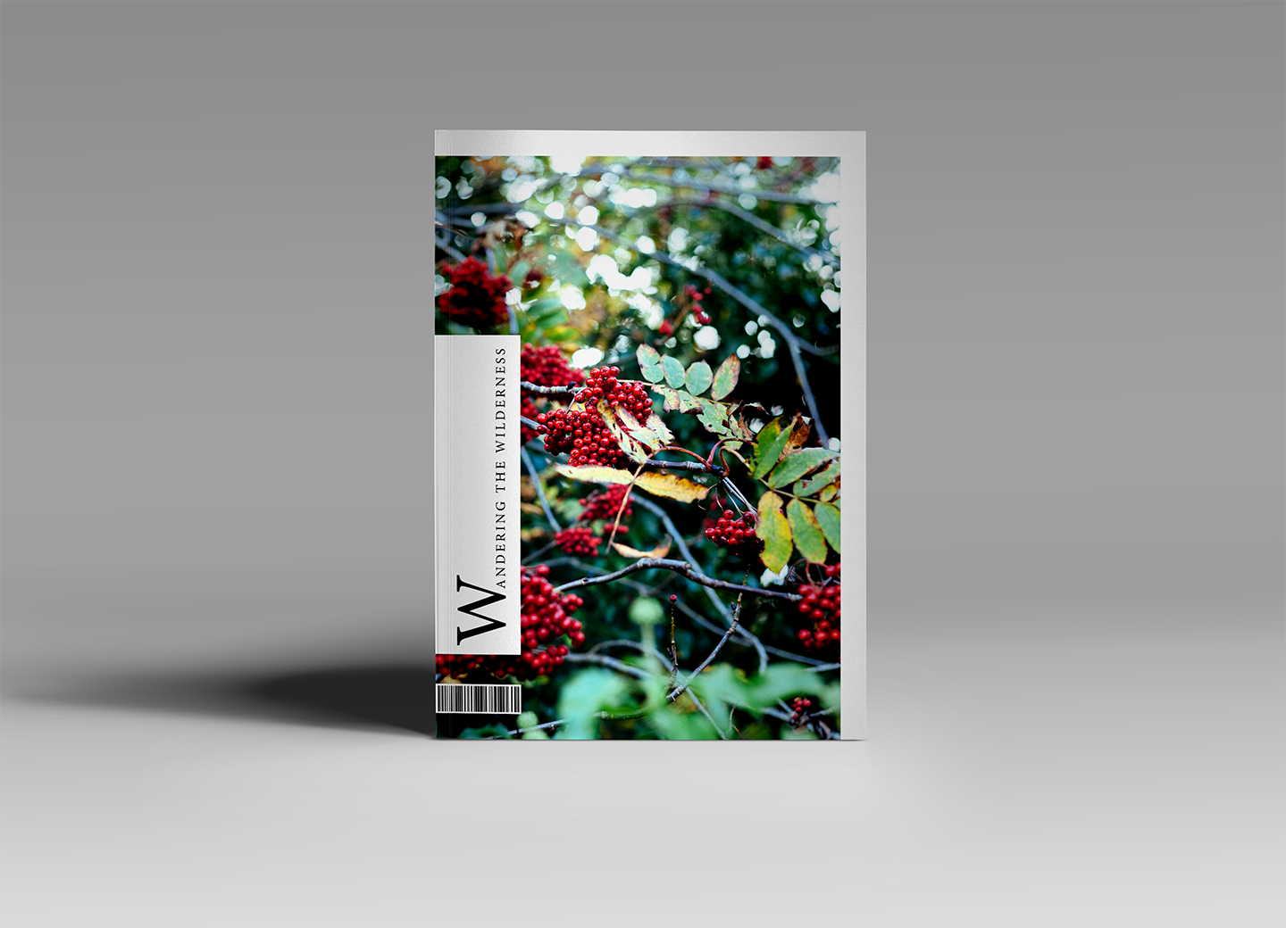 Wandering the Wilderness front cover
